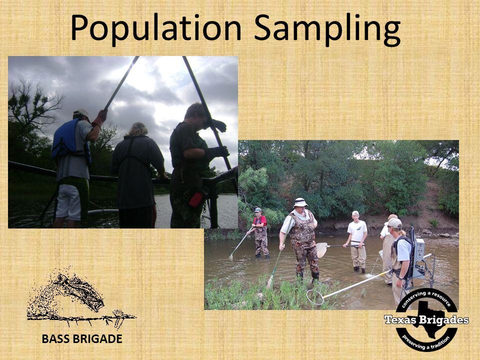 BASS BRIGADE Population Sampling