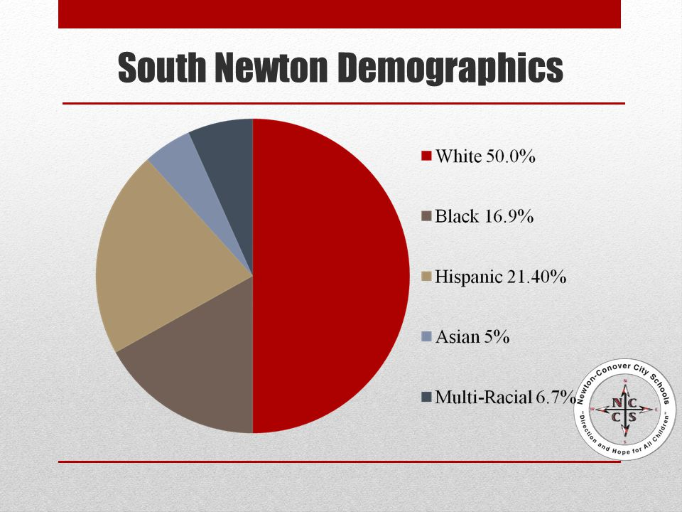 South Newton Demographics
