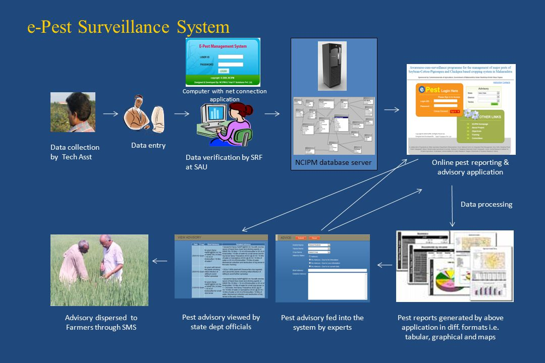 Data collection by Tech Asst e-Pest Surveillance System Data entry Pest reports generated by above application in diff.
