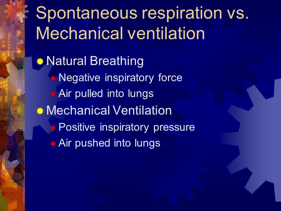 Spontaneous respiration vs.
