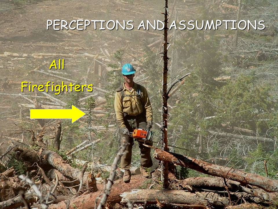 PERCEPTIONS AND ASSUMPTIONS AllFirefighters
