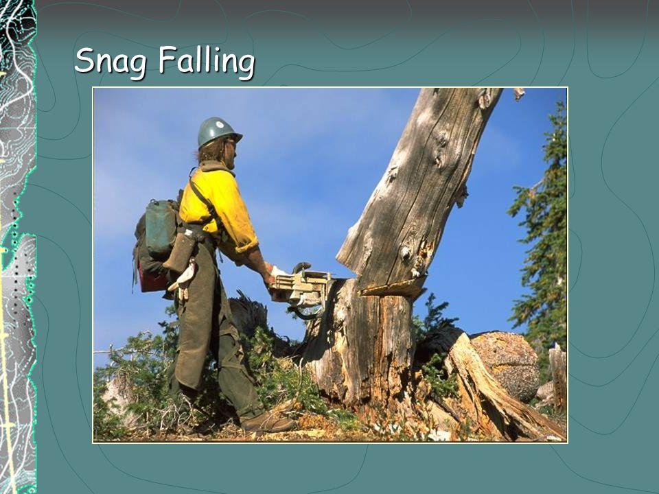 Snag Falling