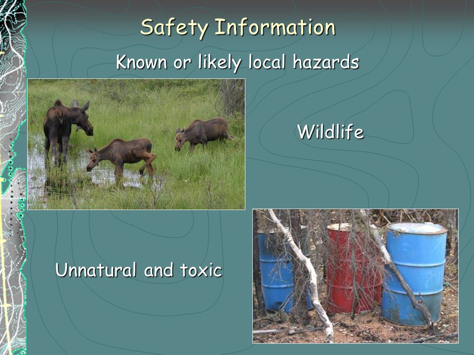 Safety Information Known or likely local hazards Wildlife Unnatural and toxic