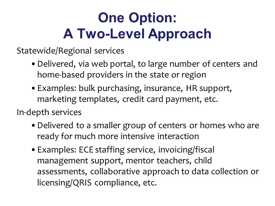 One Option: A Two-Level Approach Statewide/Regional services Delivered, via web portal, to large number of centers and home-based providers in the state or region Examples: bulk purchasing, insurance, HR support, marketing templates, credit card payment, etc.