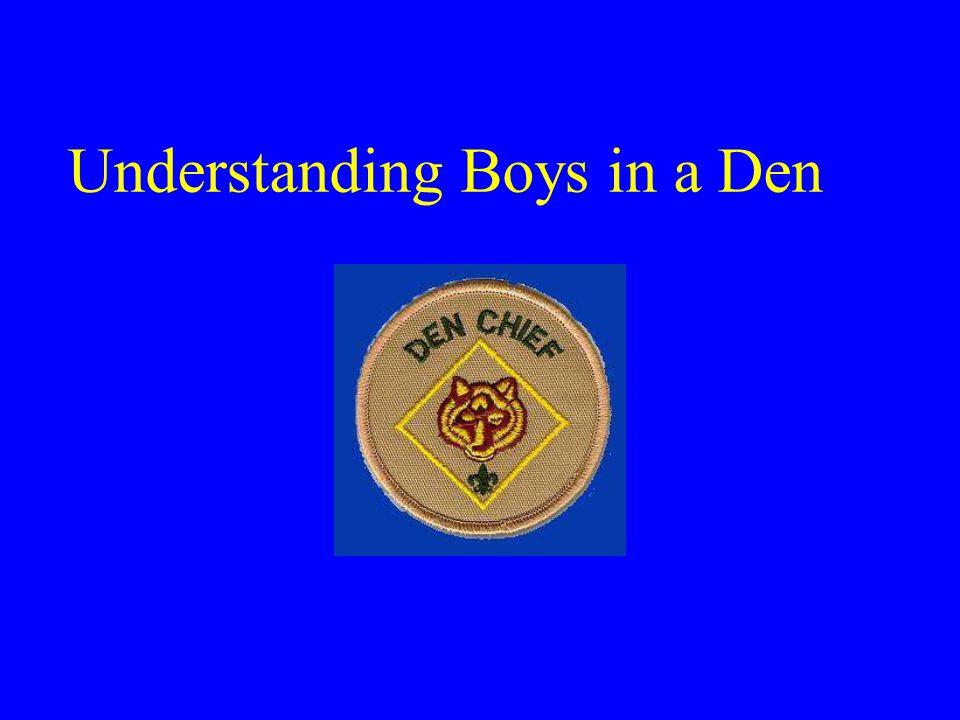 Understanding Boys in a Den