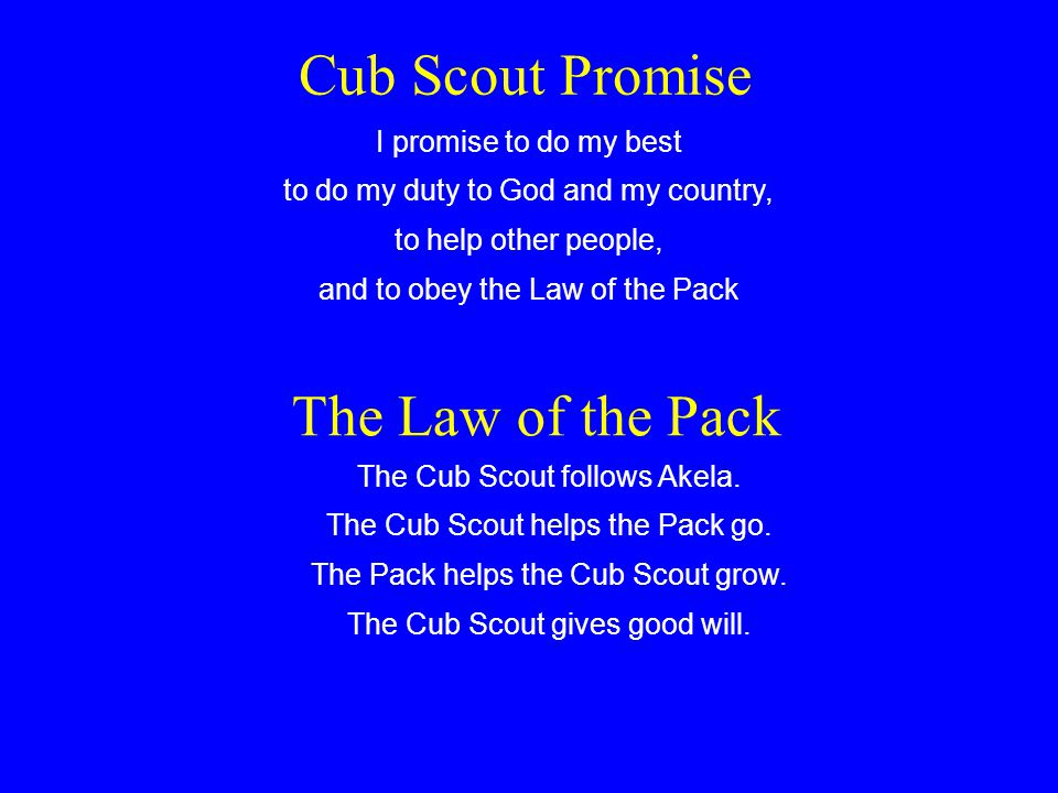 Welcome to Den Chief Training Your role as a Den Chief How to work with Cub Scouts or Webelos Scouts and the den leaders Abilities and characteristics of Cub Scouts The den meeting and your role in it How to lead activities