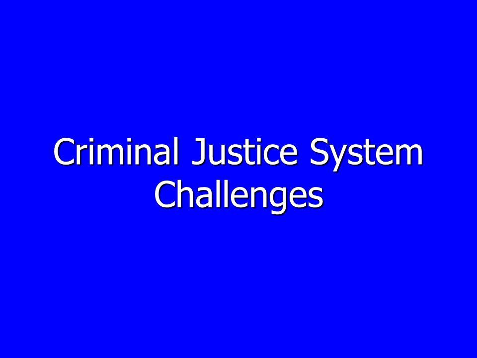 Criminal Justice System Challenges