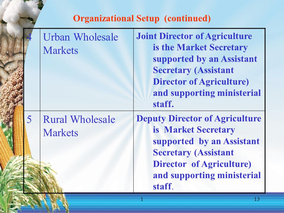 113 Organizational Setup (continued) 4Urban Wholesale Markets Joint Director of Agriculture is the Market Secretary supported by an Assistant Secretar