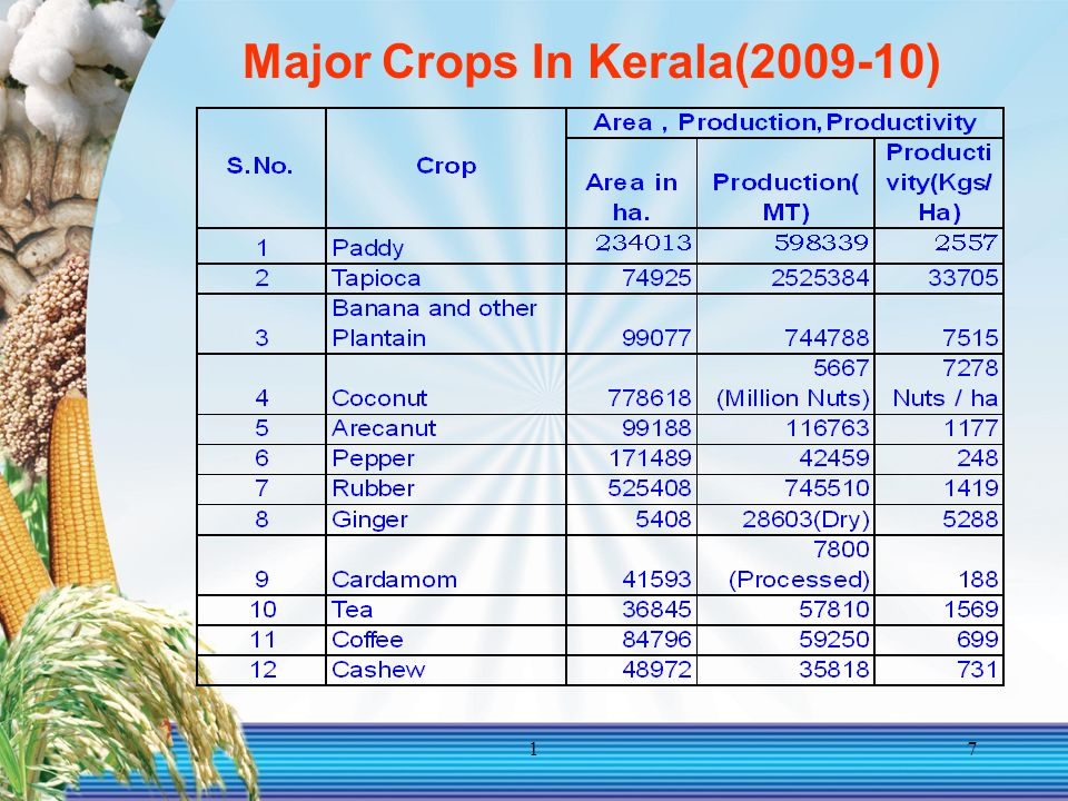 17 Major Crops In Kerala(2009-10)