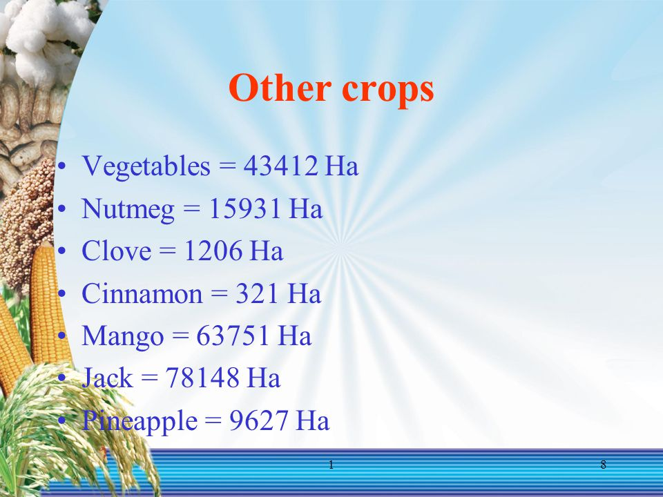 18 Other crops Vegetables = 43412 Ha Nutmeg = 15931 Ha Clove = 1206 Ha Cinnamon = 321 Ha Mango = 63751 Ha Jack = 78148 Ha Pineapple = 9627 Ha