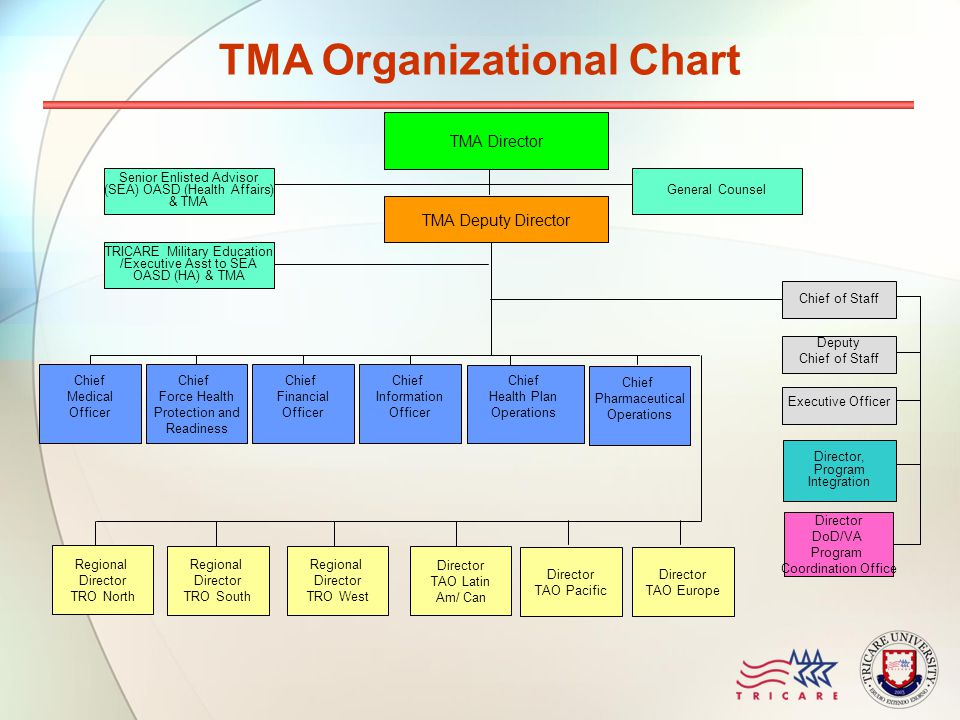 TMA Deputy Director Chief Information Officer Chief Financial Officer Chief Force Health Protection and Readiness Chief Medical Officer TMA Director S
