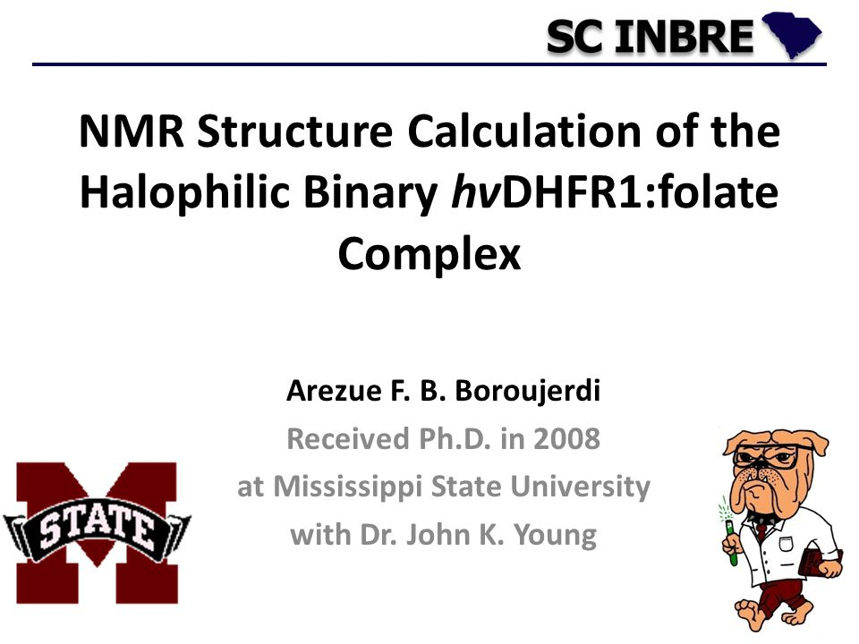 5 Arezue F. B. Boroujerdi Received Ph.D. in 2008 at Mississippi State University with Dr. John K. Young NMR Structure Calculation of the Halophilic Bi