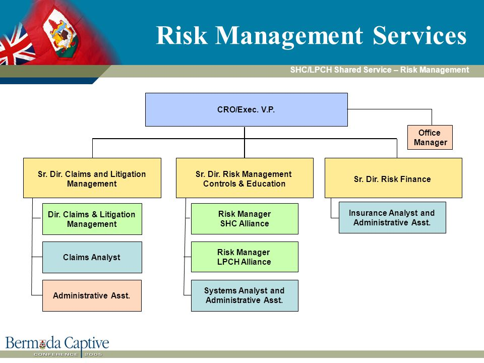 Risk Management Services CRO/Exec. V.P. Dir.