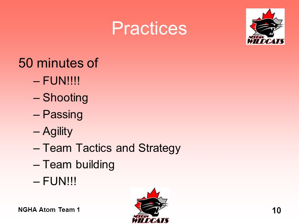 NGHA Atom Team 1 10 Practices 50 minutes of –FUN!!!! –Shooting –Passing –Agility –Team Tactics and Strategy –Team building –FUN!!!