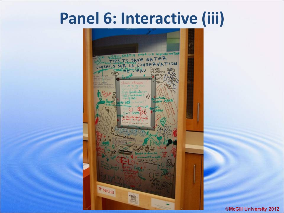 Panel 6: Interactive (iii) ©McGill University 2012