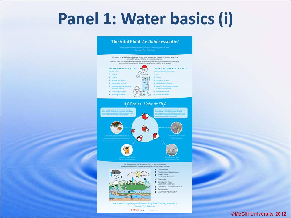 Panel 1: Water basics (i) ©McGill University 2012