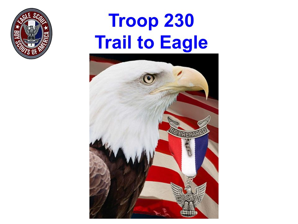 Eagle Court of Honor  Troop provides:  American Flag  Presidential Congratulatory Letter  Some decorations available  Scout's Family provides:  Coup Flag (Order from Brammer's)  Portraits (Country Parks Studio will donate one 8 x10 portrait for wall, Troop provides frame and nameplate)