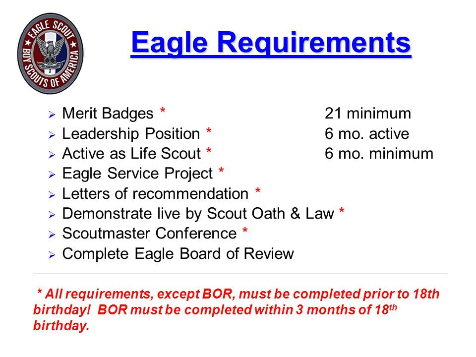 Eagle Requirements  Merit Badges *21 minimum  Leadership Position * 6 mo.