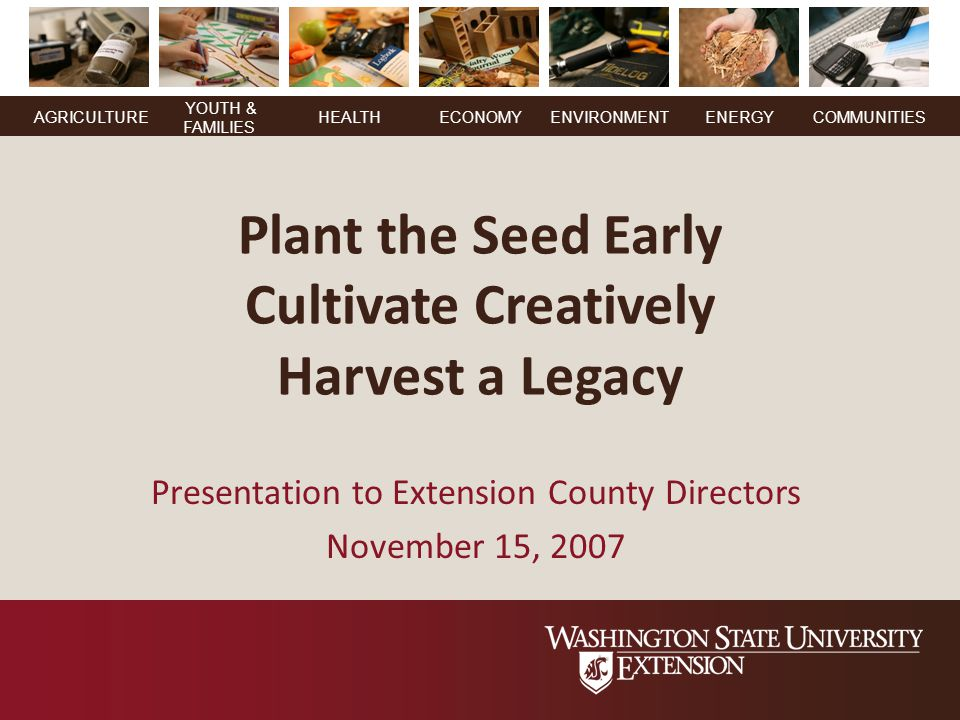 YOUTH & FAMILIES AGRICULTUREHEALTHECONOMYENVIRONMENTENERGY COMMUNITIES Plant the Seed Early Cultivate Creatively Harvest a Legacy Presentation to Extension County Directors November 15, 2007