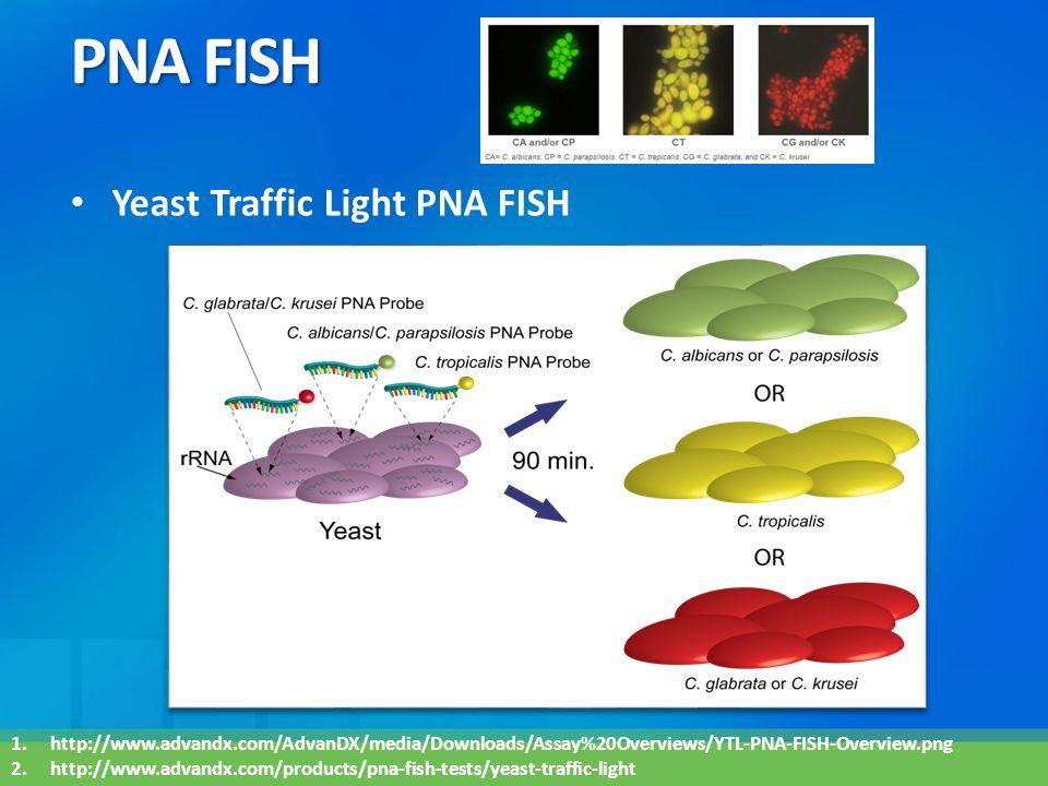 PNA FISH Yeast Traffic Light PNA FISH 1.http://www.advandx.com/AdvanDX/media/Downloads/Assay%20Overviews/YTL-PNA-FISH-Overview.png 2.http://www.advand