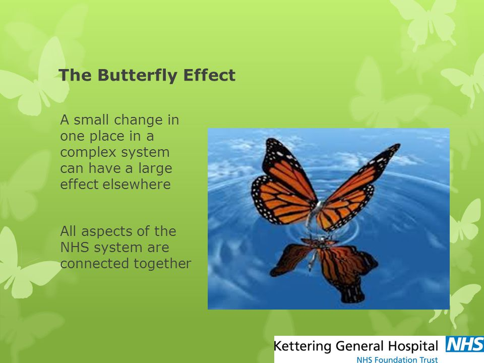 The Butterfly Effect A small change in one place in a complex system can have a large effect elsewhere All aspects of the NHS system are connected tog