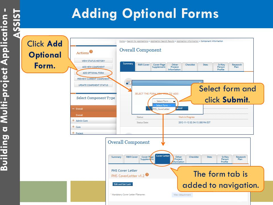 Adding Optional Forms Click Add Optional Form. Select form and click Submit. The form tab is added to navigation. 42 Building a Multi-project Applicat