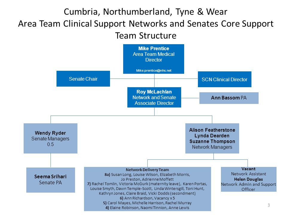 Cumbria, Northumberland, Tyne & Wear Area Team Clinical Support Networks and Senates Core Support Team Structure Ann Bassom PA Roy McLachlan Network a