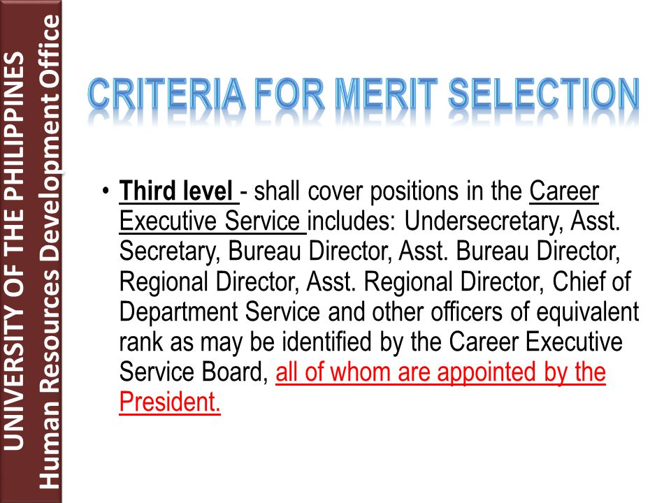 Third level - shall cover positions in the Career Executive Service includes: Undersecretary, Asst. Secretary, Bureau Director, Asst. Bureau Director,