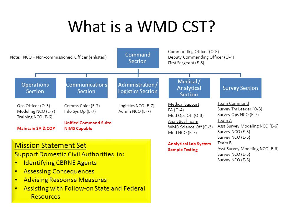 Medical Support PA (O-4) Med Ops Off (O-3) Analytical Team WMD Science Off (O-3) Med NCO (E-7) Analytical Lab System Sample Testing What is a WMD CST.
