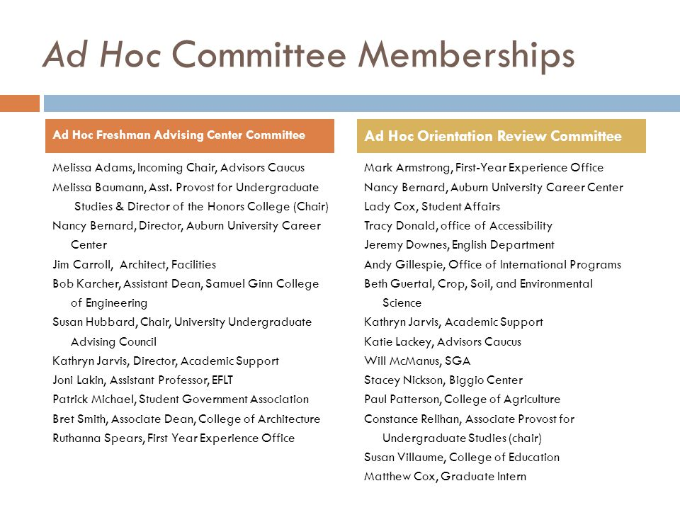 Ad Hoc Committee Memberships Melissa Adams, Incoming Chair, Advisors Caucus Melissa Baumann, Asst.