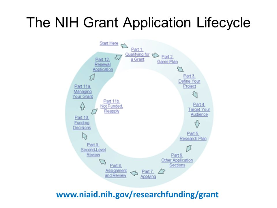 The NIH Grant Application Lifecycle www.niaid.nih.gov/researchfunding/grant