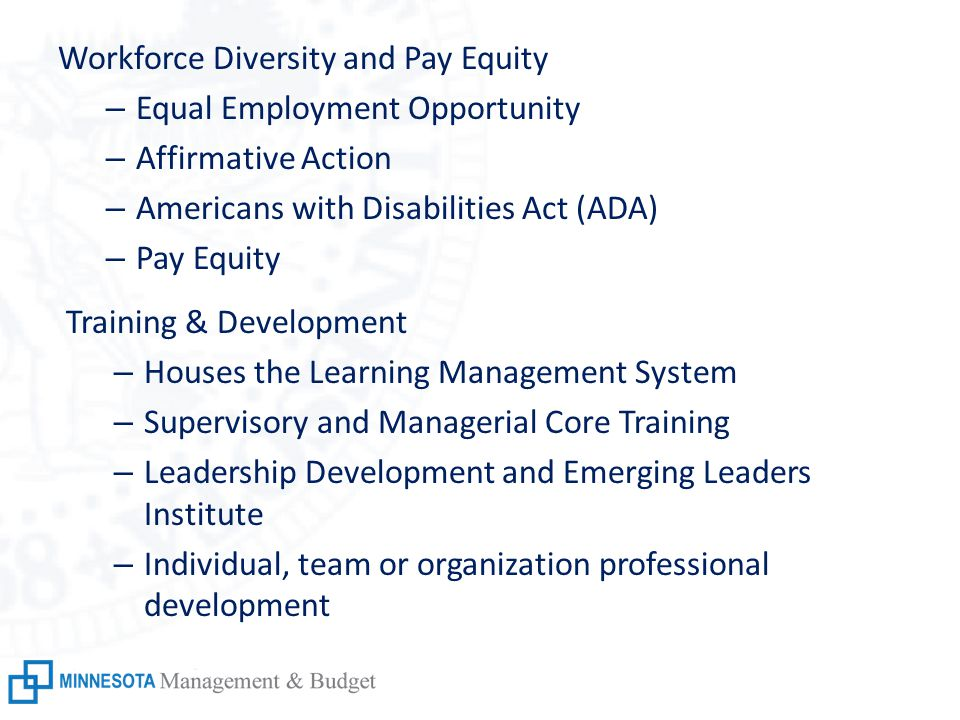 Workforce Diversity and Pay Equity – Equal Employment Opportunity – Affirmative Action – Americans with Disabilities Act (ADA) – Pay Equity Training & Development – Houses the Learning Management System – Supervisory and Managerial Core Training – Leadership Development and Emerging Leaders Institute – Individual, team or organization professional development