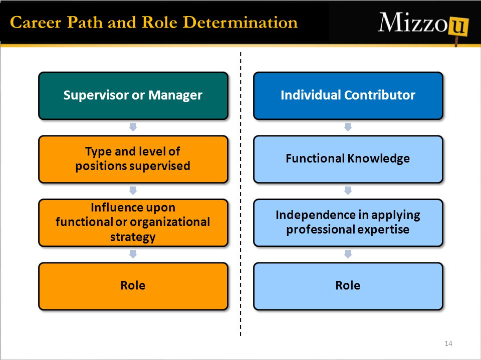 Supervisor or Manager Type and level of positions supervised Influence upon functional or organizational strategy Role Individual Contributor Functional Knowledge Independence in applying professional expertise Role Career Path and Role Determination 14