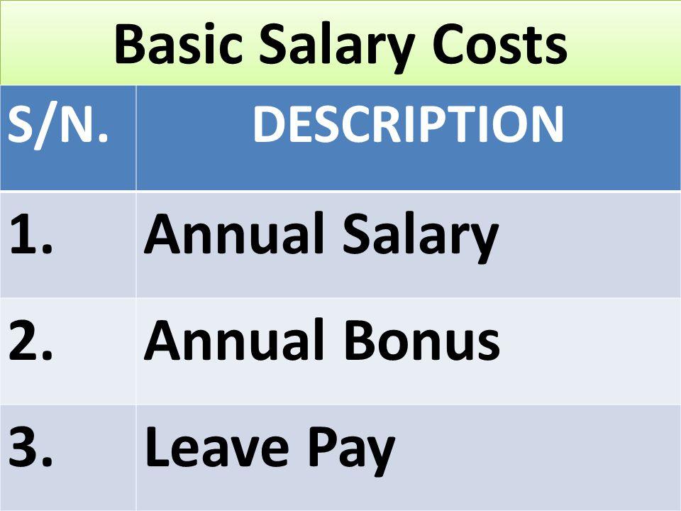 Basic Salary Costs S/N.DESCRIPTION 1.Annual Salary 2.Annual Bonus 3.Leave Pay