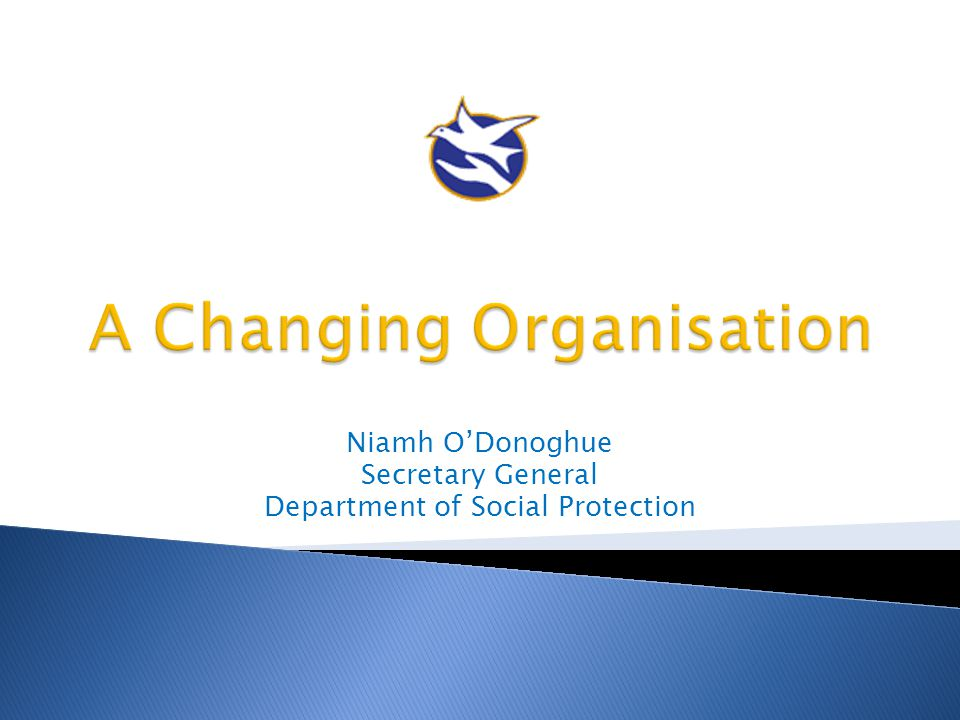  Many reform programmes  Many organisations  The challenge of change  What doesn't work  What does work.