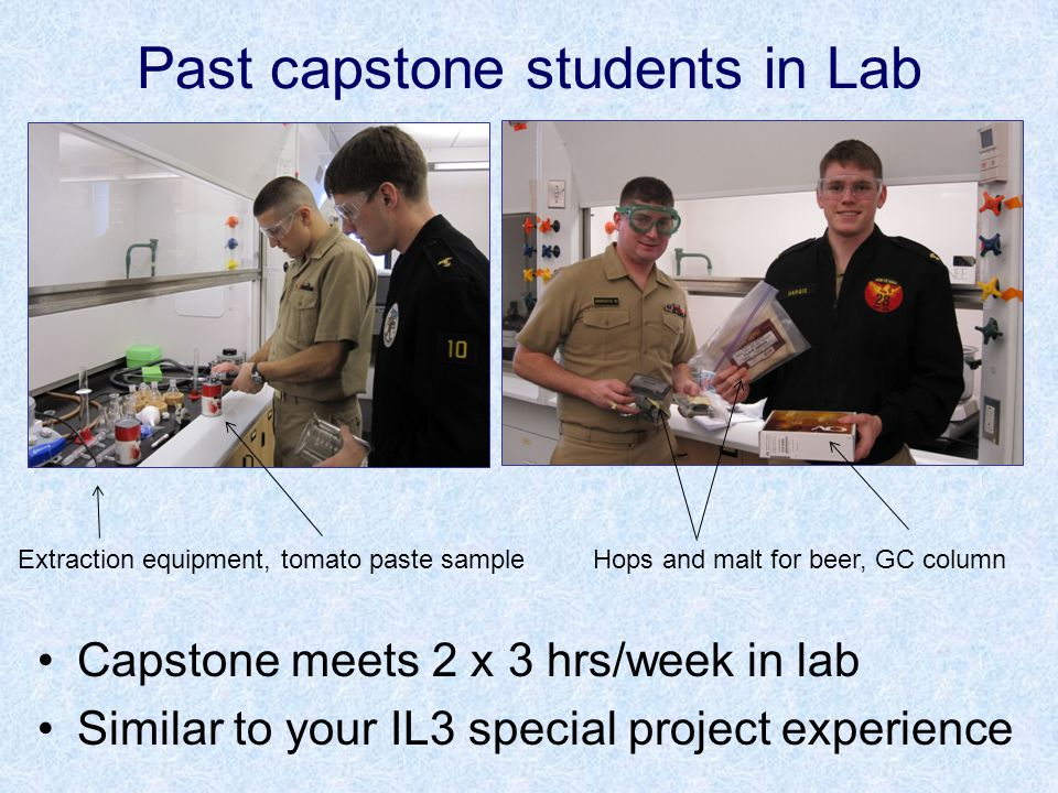 Some Previous Capstone Projects The Leaching of Nitrate and Phosphate from Fertilizers Kim Lahnala and Paul Lietzan ('09) How much nitrate and phosphate from fertilizers are absorbed by soil and how much are carried away by runoff.