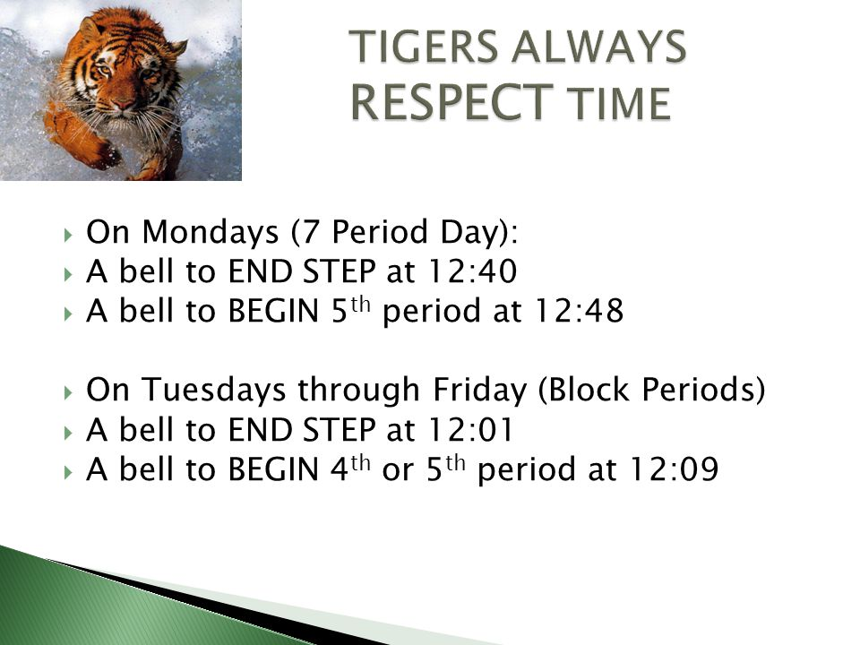  On Mondays (7 Period Day):  A bell to END STEP at 12:40  A bell to BEGIN 5 th period at 12:48  On Tuesdays through Friday (Block Periods)  A bell to END STEP at 12:01  A bell to BEGIN 4 th or 5 th period at 12:09