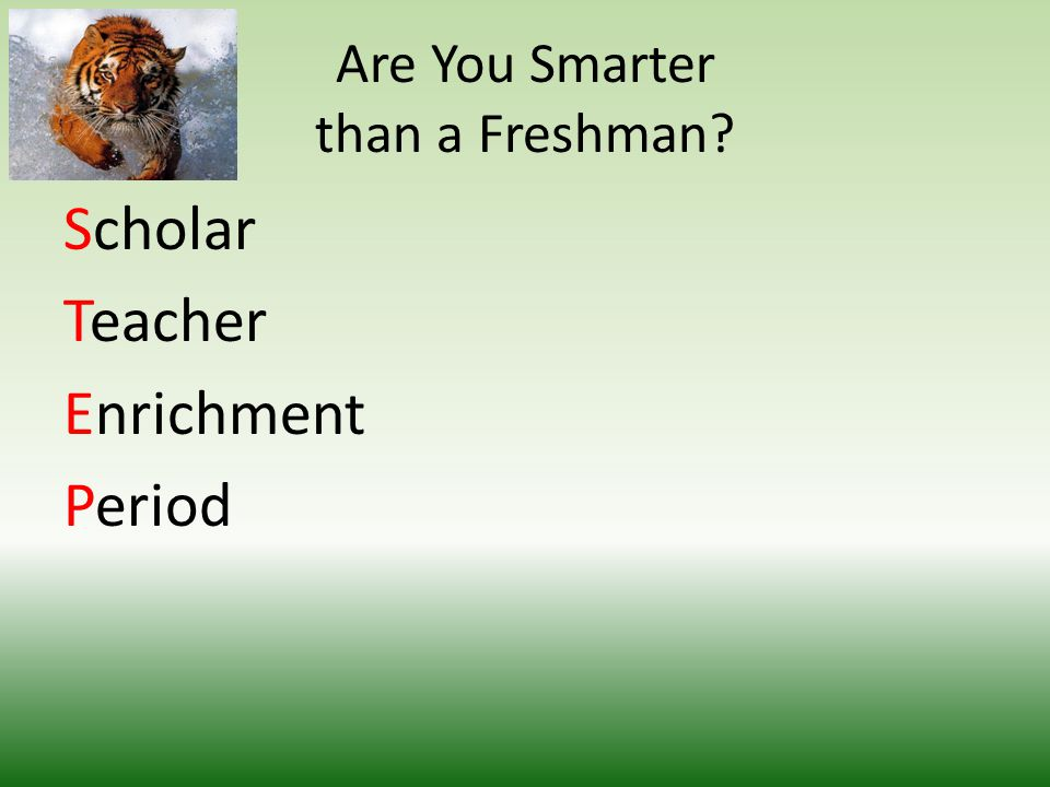 Are You Smarter than a Freshman Scholar Teacher Enrichment Period
