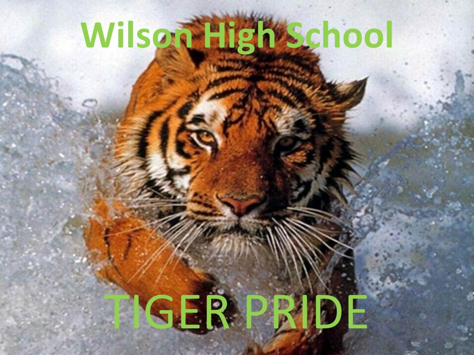 Wilson High School TIGER PRIDE