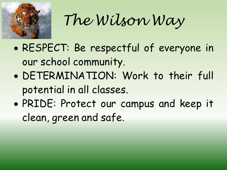 The Wilson Way  RESPECT: Be respectful of everyone in our school community.