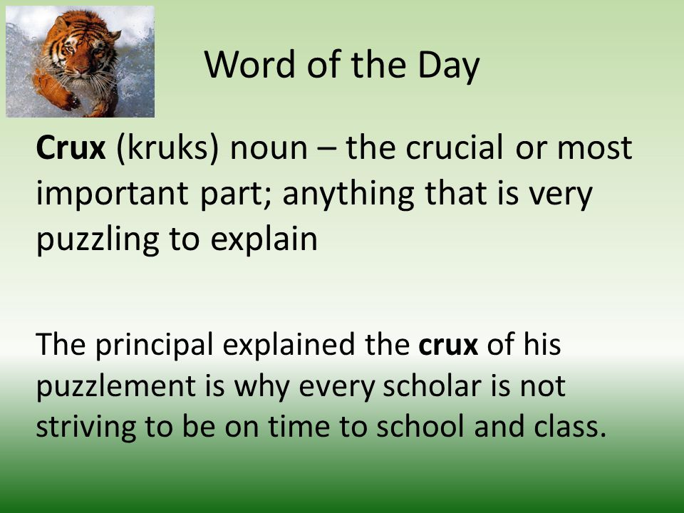 Word of the Day Crux (kruks) noun – the crucial or most important part; anything that is very puzzling to explain The principal explained the crux of his puzzlement is why every scholar is not striving to be on time to school and class.