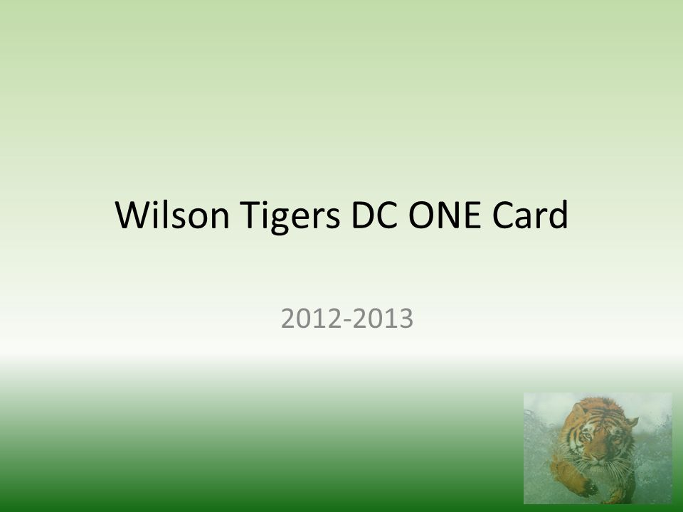 Wilson Tigers DC ONE Card 2012-2013