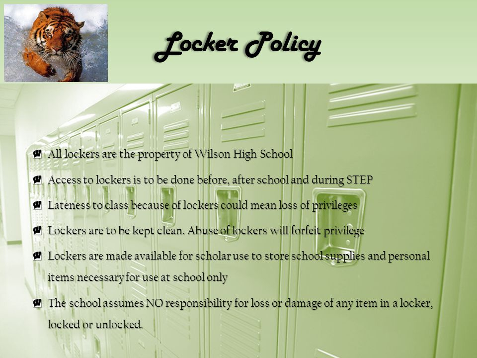 Locker Policy All lockers are the property of Wilson High School Access to lockers is to be done before, after school and during STEP Lateness to class because of lockers could mean loss of privileges Lockers are to be kept clean.