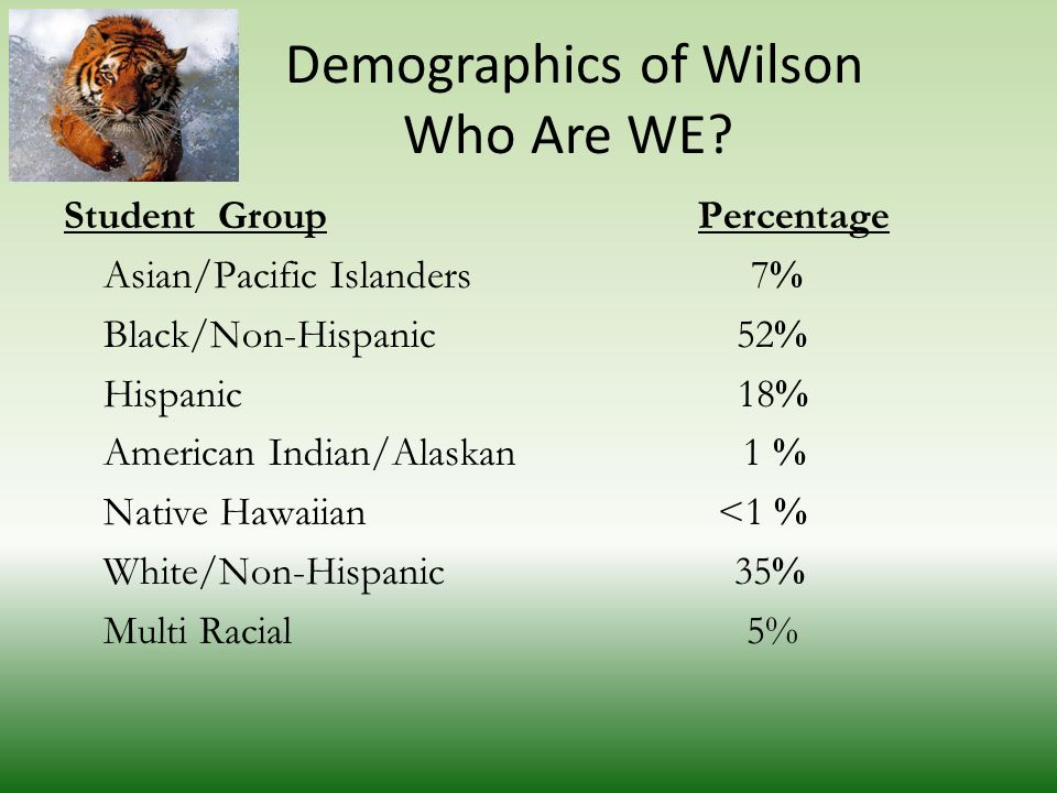 Demographics of Wilson Who Are WE.