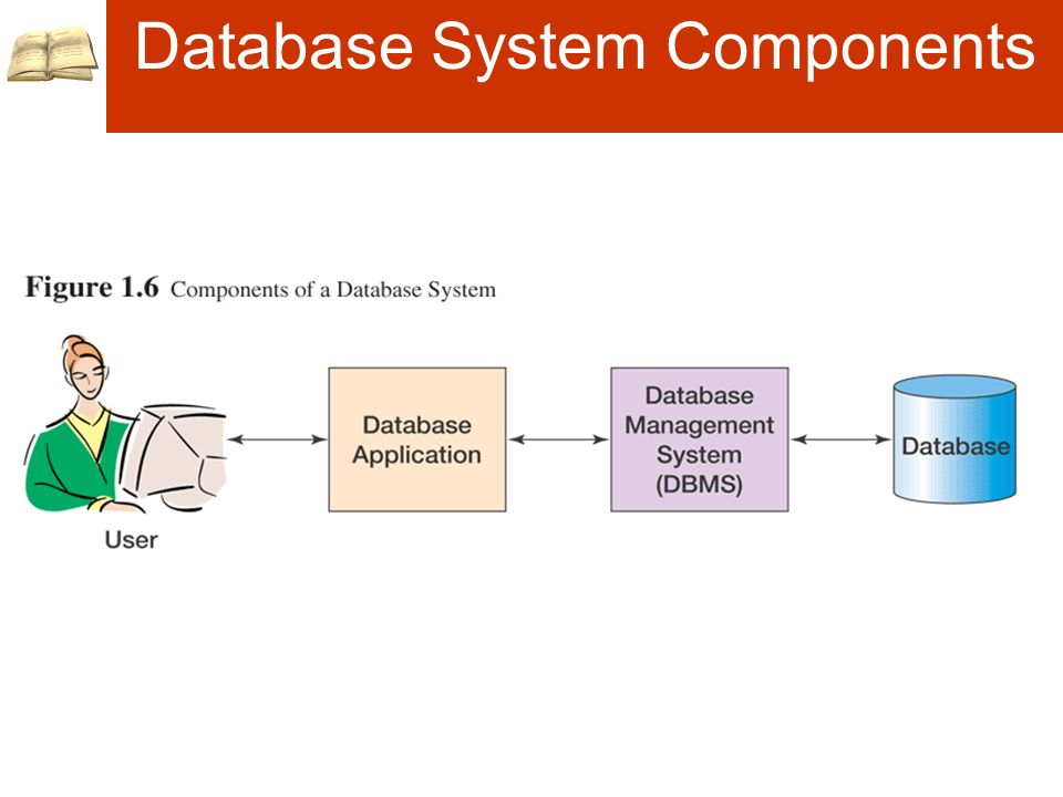 Database System Components