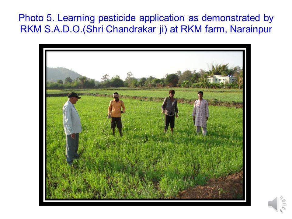 Photo 4. Preparation of vegetable nursry initiated by RKM at village- Gadhebengal, Narainpur