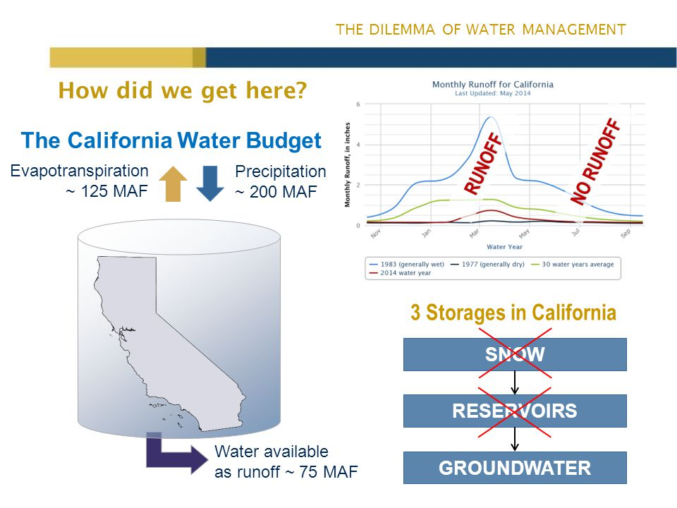 THE DILEMMA OF WATER MANAGEMENT Changes in cropping patterns in the Sacramento Valley Crop 2003-052009-12 Change Deciduous Nuts & Fruits219,182258,11338,931 Olive & Citrus 28,99737,0028,005 Vineyard 4,0003,676-324 Rice 348,389350,3161,927 Pasture 112,623127,52814,905 Grain & Hay 71,77461,434-10,340 Field Crops 58,44037,874-20,566 Truck Crops 33,78833,594-194 Idle Land 32,20426,609-5,595 Total 909,397936,14626,749 Source: Northern Region, Land Use Section, 2012 Average values (in acres) for five northern Sacramento Valley counties.