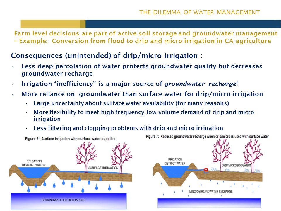 THE DILEMMA OF WATER MANAGEMENT Consequences (unintended) of drip/micro irrigation : Less deep percolation of water protects groundwater quality but decreases groundwater recharge Irrigation inefficiency is a major source of groundwater recharge.