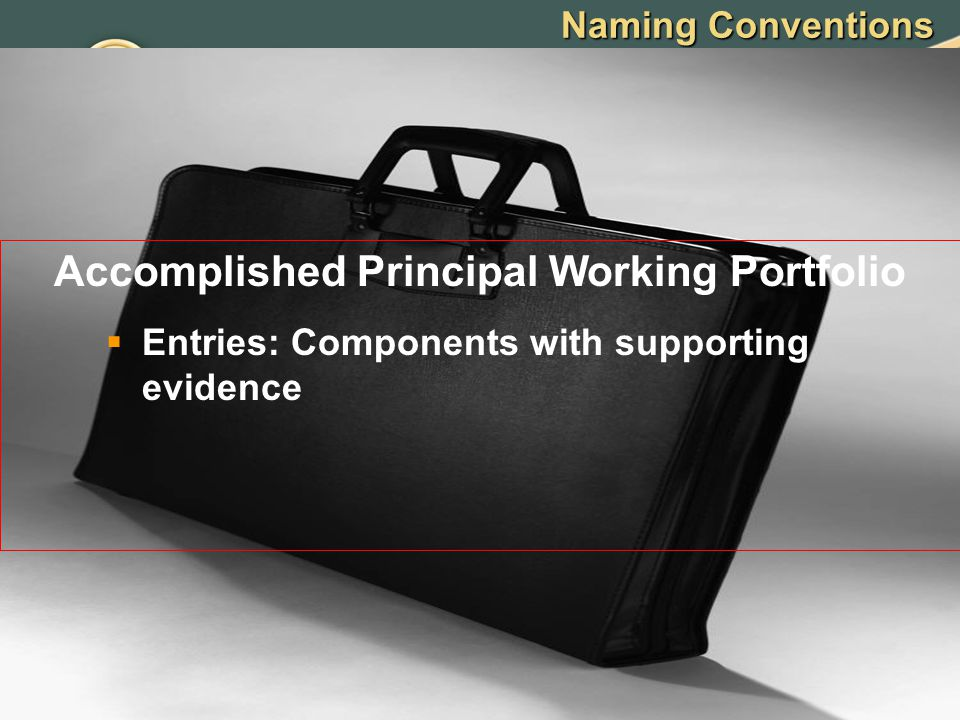 Naming Conventions Accomplished Principal Working Portfolio  Entries: Components with supporting evidence