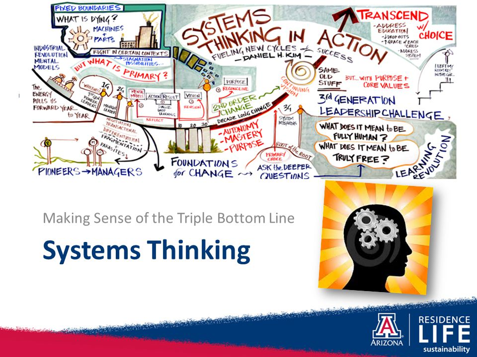 Systems Thinking Making Sense of the Triple Bottom Line